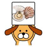犬ってホタテを食べれるの?(大丈夫なの?) ヒモの部分は!?